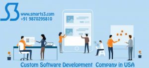 Custom-Software-Development-Company- (1).jpg