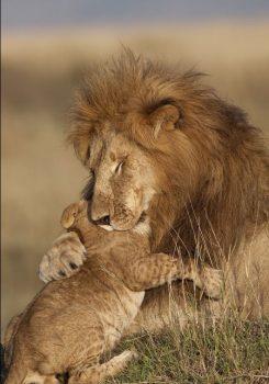 King and the Prince.jpeg