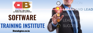 Software training in bangalore.png