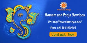 shastrigal Homama and Pooja Services.jpg