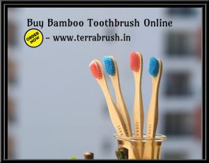 eco friendly toothbrush.jpg