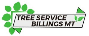 tree_service_billings_mt.jpg