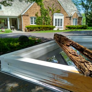 Window-Repair-Glass-Replacement-Services.jpg