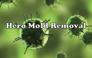 HERO MOLD LOGO.png