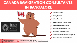 Immigration consultants In Bangalore.png