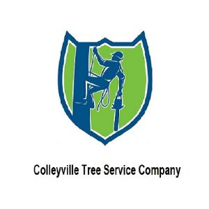 colleyville-tree-service-company-home_orig.jpg