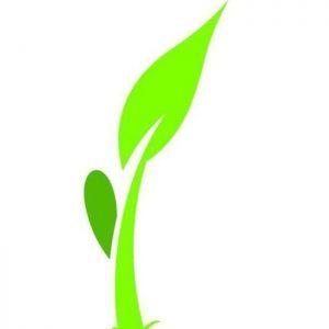 theoxfordschools2_logo.jpg