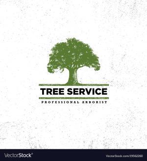 professional-arborist-tree-care-service-organic-vector-19562260.jpg