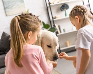 dog-having-treat-1.jpg