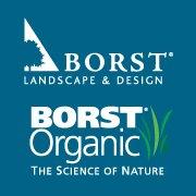 Borst logo 1.jpg