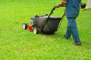 leander-landscaping-pros-services_orig.jpg