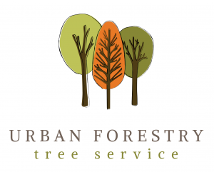 Urban Forestry Tree Service (1).png