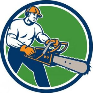 elgin-tree-service-and-snow-plowing-home.jpg