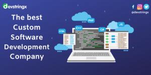 Custom Softwares Development Company 2.png