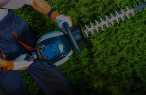 Tree Service Shreveport.jpg