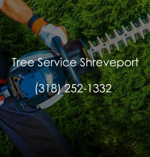 Tree Service Shreveport logo 2.jpg