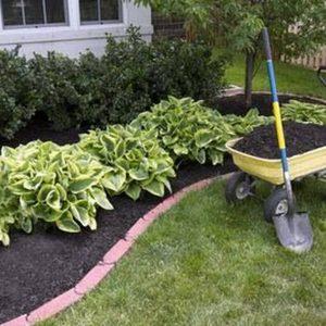 Lawn Clean Up.jpg