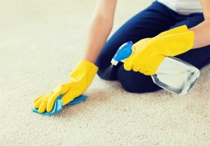 The Importance Of Cleaning Your Carpet.jpg
