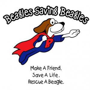 logo_brew beagle.png